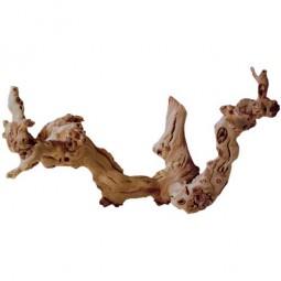 Weinreben Wurzel, ca. 30 cm, 1 St.
