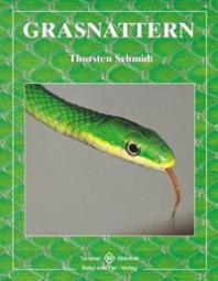 Grasnattern