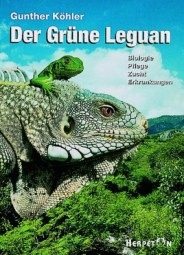 Der Grüne Leguan