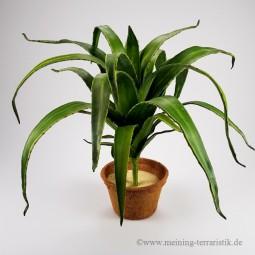 Aloe, grün, 66cm