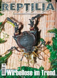 REPTILIA 96, Wirbellose im Trend. 8/9 2012
