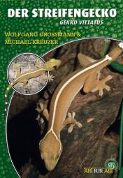 Der Streifengecko - Gekko vitattus