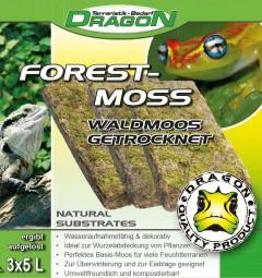 FOREST-Moss 3x 5 Liter