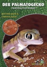 Der Palmatogecko - Pachydactylus rangei