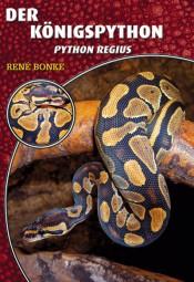Der Königspython - Python regius