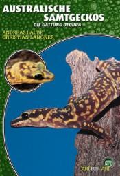 Australische Samtgeckos - Die Gattung Oedura