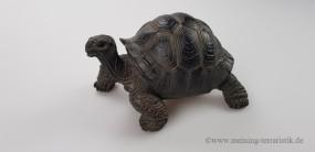 Landschildkröte mittel, 16 x 13 x 9 cm