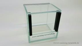 Glasterrarium 10 x 10 x 10 cm ( LxTxH ), 4 mm Glas