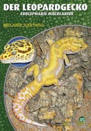 Der Leopardgecko - Eublepahris macularius