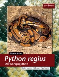 Python regius - Der Königspython