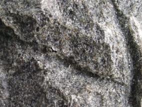 Felsschale zur Wurmfütterung DOLOMIT 325 ml, BTH 22x12x5,5 cm