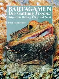 Bartagamen - Die Gattung Pogona, Artgerechte Haltung, Pflege und Zucht