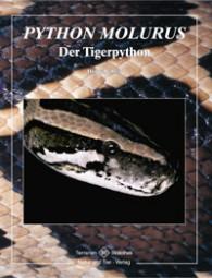 Python molurus - Der Tigerpython