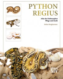 Python regius – Atlas der Farbmorphen