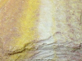 Felsschale zur Wurmfütterung SAND STONE 325 ml, BTH 22x12x5,5 cm